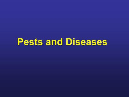 Pests and Diseases For this class we'll discuss some of the pests and diseases that you'll need to become familiar with as a beekeeper. Some you'll never.