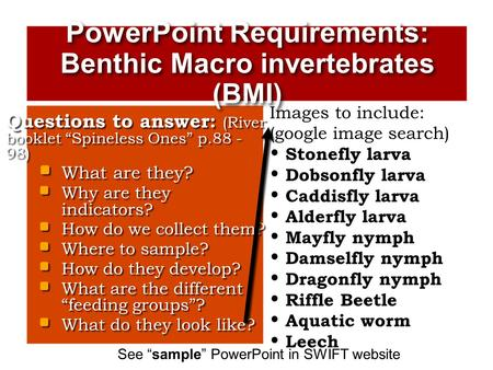 PowerPoint Requirements: Benthic Macro invertebrates (BMI)