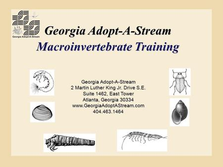 Georgia Adopt-A-Stream Macroinvertebrate Training