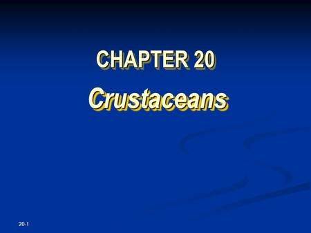 20-1 CHAPTER 20 Crustaceans Crustaceans. Copyright © The McGraw-Hill Companies, Inc. Permission required for reproduction or display. 20-2 Sally Lightfoot.