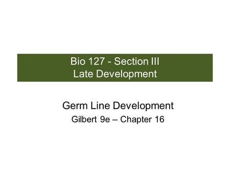 Bio 127 - Section III Late Development Germ Line Development Gilbert 9e – Chapter 16.