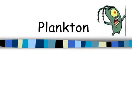 Plankton What is Plankton? Animals and plants that either float passively in the water, or possess such limited powers of swimming that they are carried.