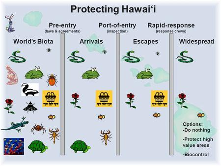 Pre-entry (laws & agreements) Port-of-entry (inspection) Rapid-response (response crews) Protecting Hawai'i World's BiotaArrivalsEscapes Options: -Do nothing.
