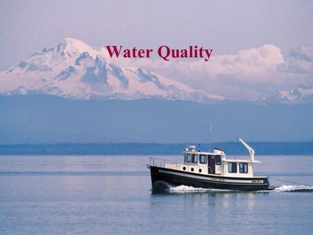 Water Quality. Water, water, everywhere…  water.html About 71 percent of the Earth's surface is water- covered, and.