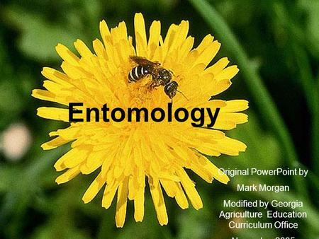 Entomology Original PowerPoint by Mark Morgan Modified by Georgia Agriculture Education Curriculum Office November 2005.