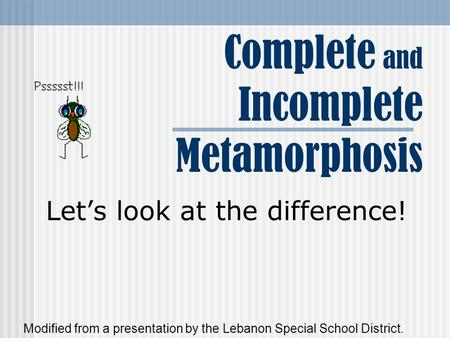 Complete and Incomplete Metamorphosis Let's look at the difference! Modified from a presentation by the Lebanon Special School District.