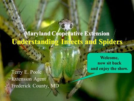 Maryland Cooperative Extension Understanding Insects and Spiders Terry E. Poole Extension Agent Frederick County, MD Welcome, now sit back and enjoy the.