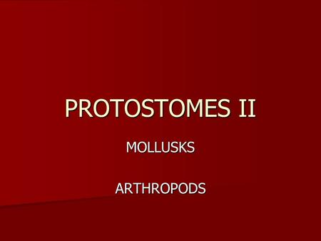 PROTOSTOMES II MOLLUSKSARTHROPODS. MOLLUSKS Clams, snails, slugs, chitons, octopuses Clams, snails, slugs, chitons, octopuses Probably evolved early—after.