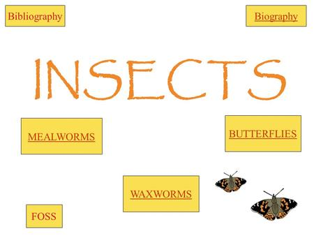 INSECTS WAXWORMS BUTTERFLIES BibliographyBiography FOSS MEALWORMS.