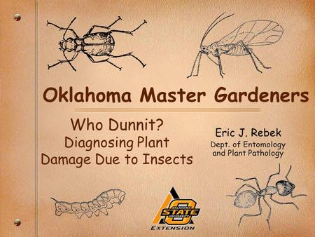 Oklahoma Master Gardeners Eric J. Rebek Dept. of Entomology and Plant Pathology Who Dunnit? Diagnosing Plant Damage Due to Insects.
