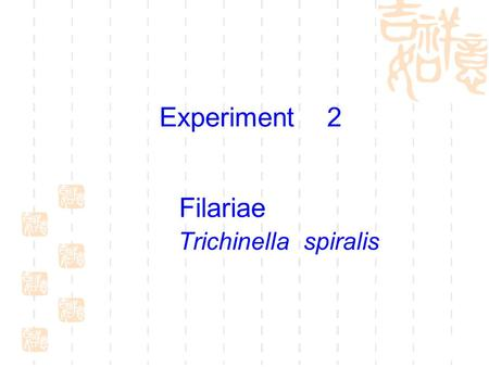 Filariae Trichinella spiralis Experiment 2 To study the morphology of microfilariae and laboratory diagnostic methods. To learn the morphology of T.