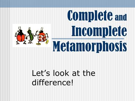 Complete and Incomplete Metamorphosis Let's look at the difference!
