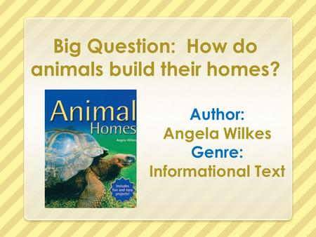 Big Question: How do animals build their homes?