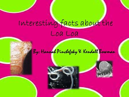 Interesting facts about the Loa Loa By: Hannah Pinchefsky & Kendall Bowman.