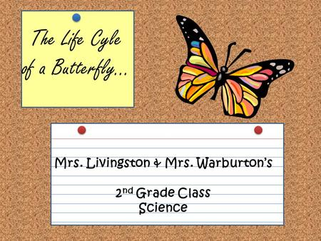 The Life Cyle of a Butterfly… Mrs. Livingston & Mrs. Warburton's 2 nd Grade Class Science.