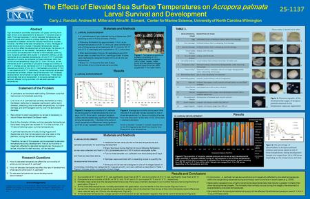 The Effects of Elevated Sea Surface Temperatures on Acropora palmata Larval Survival and Development Carly J. Randall, Andrew M. Miller and Alina M. Szmant,
