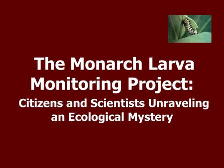 The Monarch Larva Monitoring Project: Citizens and Scientists Unraveling an Ecological Mystery.