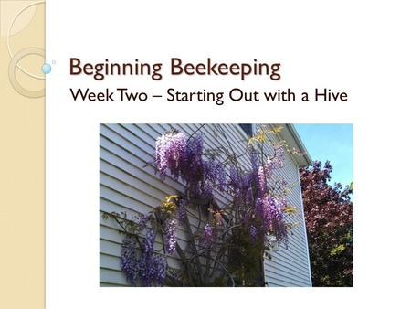 Beginning Beekeeping Week Two – Starting Out with a Hive.