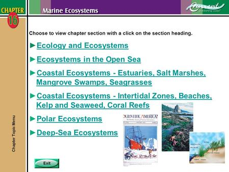 Exit Choose to view chapter section with a click on the section heading. ►Ecology and EcosystemsEcology and Ecosystems ►Ecosystems in the Open SeaEcosystems.