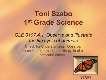 Toni Szabo 1 st Grade Science GLE 0107.4.1 Observe and illustrate the life cycle of animals Check for Understanding: Observe, describe, and record the.
