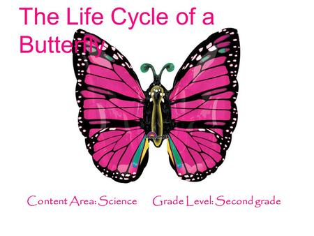 The Life Cycle of a Butterfly Content Area: Science Grade Level: Second grade.