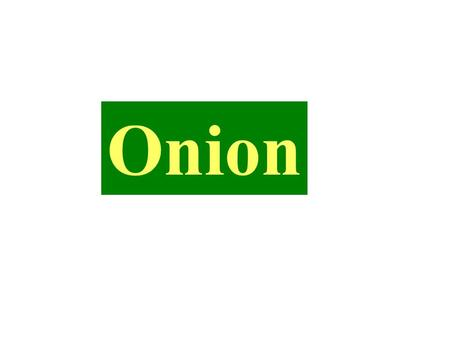 Onion.  The bulb group consists of a wide range of under ground vegetables like onion, garlic, leek, chives and shallot etc.  Onion and garlic are the.
