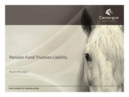 Pension Fund Trustees Liability Ncedi Mbongwe. Introduction to Camargue Underwriting Managers Established in 2001 Underwriters: Mutual and Federal and.