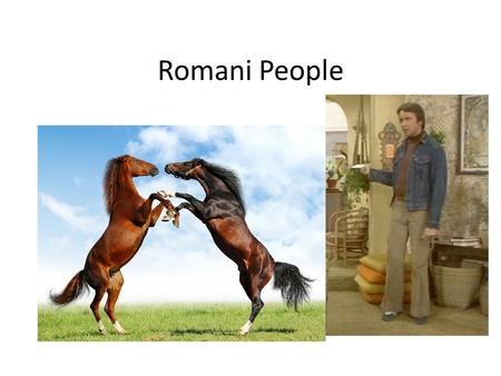 Romani People. Bizarre Foods What did you learn about the Romani people?