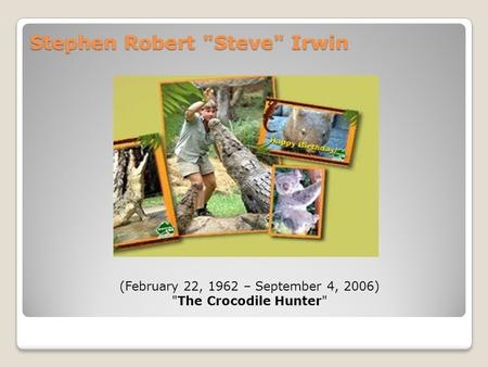 Stephen Robert Steve Irwin (February 22, 1962 – September 4, 2006) The Crocodile Hunter