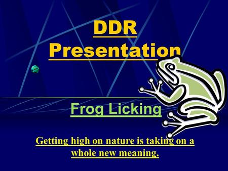 DDR Presentation Frog Licking Getting high on nature is taking on a whole new meaning.