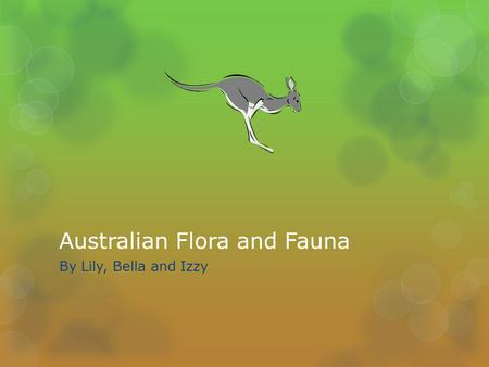 Australian Flora and Fauna By Lily, Bella and Izzy.