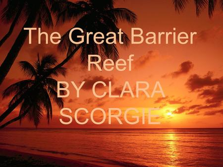 The Great Barrier Reef BY CLARA SCORGIE. The Great Barrier Reef The Great Barrier Reef is famous for it's beautiful features including: fish, coral, sea.