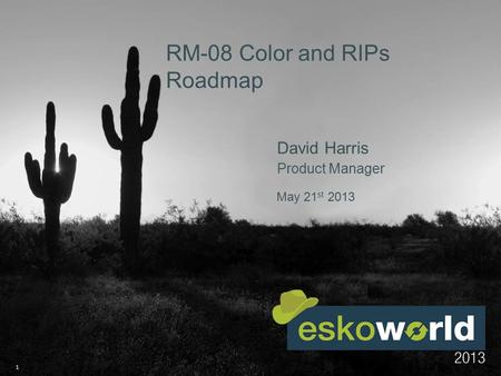 1 May 21 st 2013 RM-08 Color and RIPs Roadmap David Harris Product Manager.