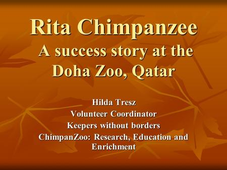 Rita Chimpanzee A success story at the Doha Zoo, Qatar Hilda Tresz Volunteer Coordinator Keepers without borders ChimpanZoo: Research, Education and Enrichment.