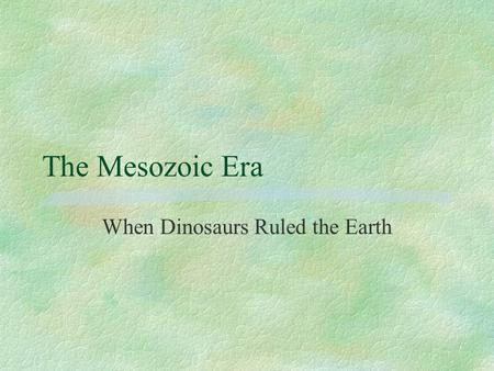 The Mesozoic Era When Dinosaurs Ruled the Earth. The Mesozoic Era §Began approximately 245 million years ago after a major mass extinction. §Is subdivided.