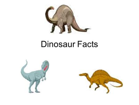 Dinosaur Facts.