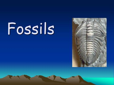 Fossils. What is a fossil? A fossil is an impression, cast, original material or track of any animal or plant that is preserved in rock after the original.