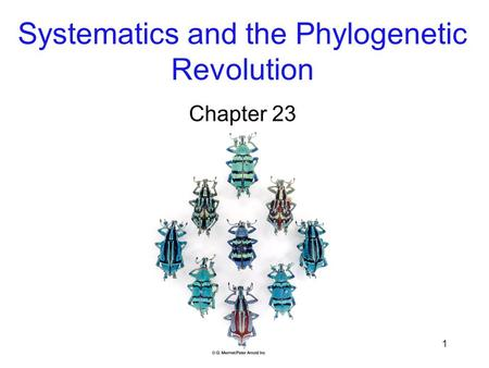 Systematics and the Phylogenetic Revolution