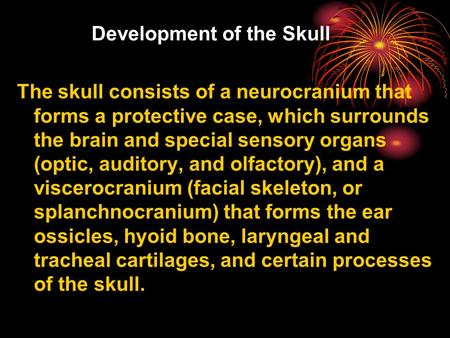 Development of the Skull The skull consists of a neurocranium that forms a protective case, which surrounds the brain and special sensory organs (optic,
