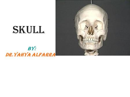Skull BY: DR.Yahya Alfarra. Skull Defenition:it is the skeleton of the head * The skull is composed of several separate bones united at immobile joints.