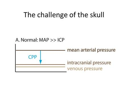 The challenge of the skull. Hypotension and cerebral perfusion.