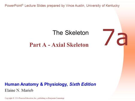 The Skeleton Part A - Axial Skeleton