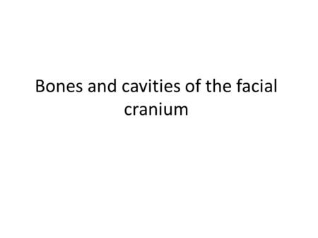 Bones and cavities of the facial cranium. TMJ Anterior Skull frontal bone supraorbit al foramen zygomatic bone maxillar y bone alveolar fossa infraorbita.