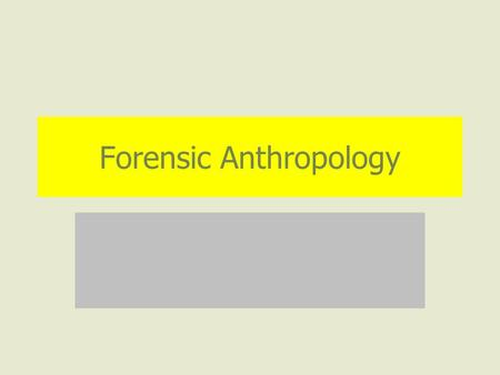 Forensic Anthropology. What Questions Can Forensic Anthropology Answer? Race Sex Approximate age Approximate stature Pathologies (diseases) Traumas (injuries)