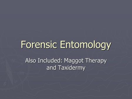 Forensic Entomology Also Included: Maggot Therapy and Taxidermy.