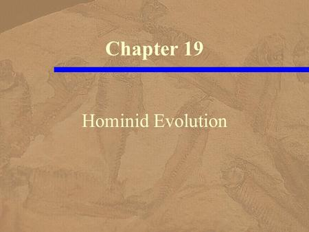 Hominid Evolution Chapter 19. Classification Hierarchy (Linnaeus) Kingdom Animal Phylum Chordate Class Mammal Order Primates Family Hominids Genus Homo.