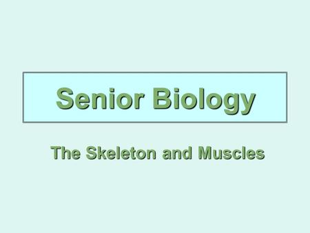 Senior Biology The Skeleton and Muscles. Musculoskeletal System The skeletal and muscular systems which work together and are controlled by the nervous.