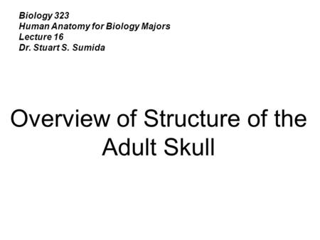 Biology 323 Human Anatomy for Biology Majors Lecture 16 Dr. Stuart S. Sumida Overview of Structure of the Adult Skull.