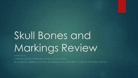 Skull Bones and Markings Review