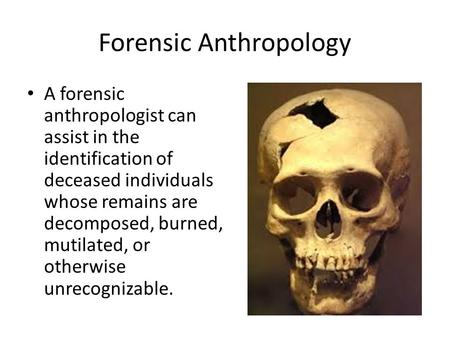 Forensic Anthropology A forensic anthropologist can assist in the identification of deceased individuals whose remains are decomposed, burned, mutilated,